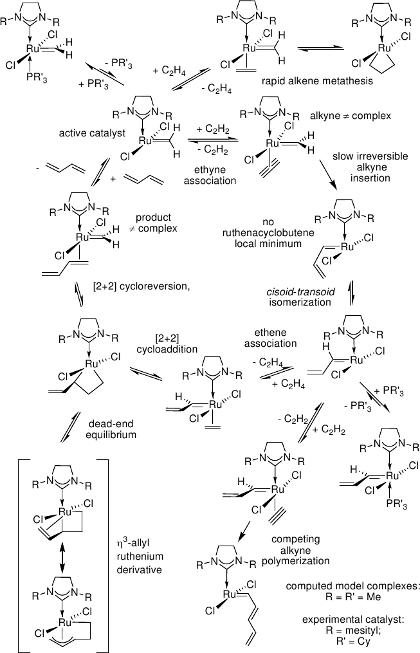 enyne metathesis catalyzed by ruthenium carbene complexes New in situ generated ruthenium catalysts bearing n-heterocyclic carbene  metathesis-active ruthenium complexes  bearing n-heterocyclic carbene.