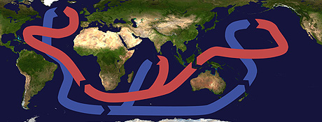 Thermohaline Circulation Cc By Sa 3.jpg